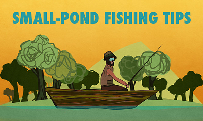 Small pond fishing tips for Pond bass fishing tips